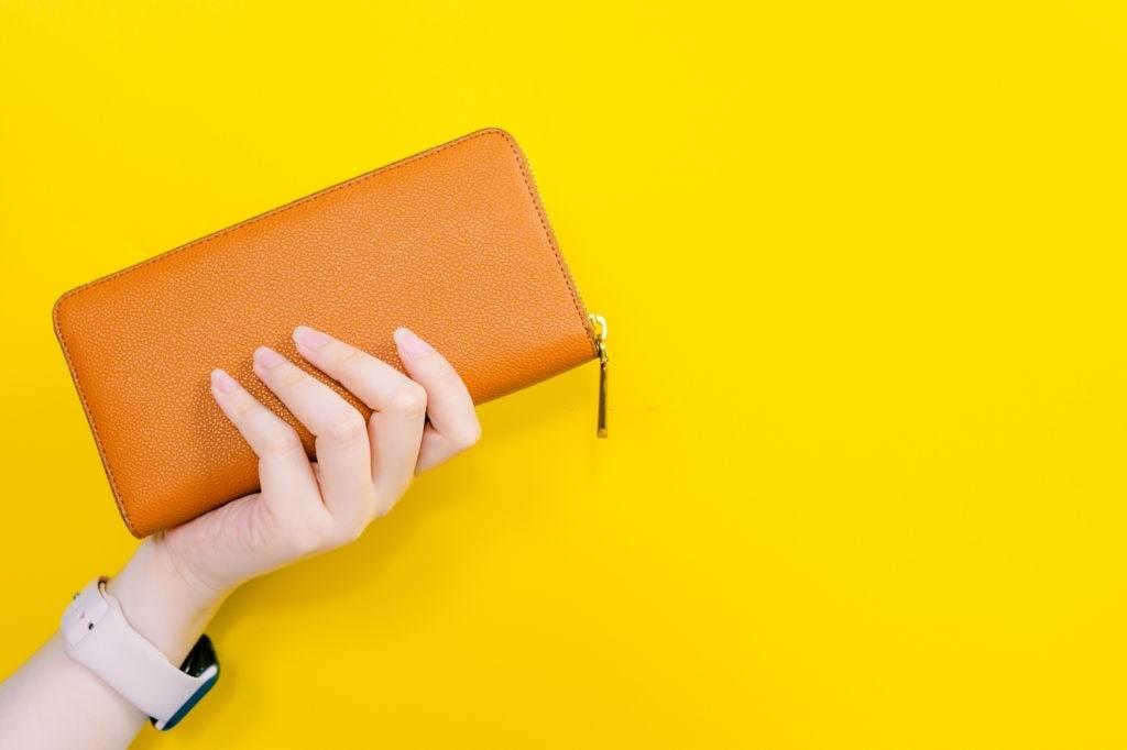 Best Baggit Wallets For Women